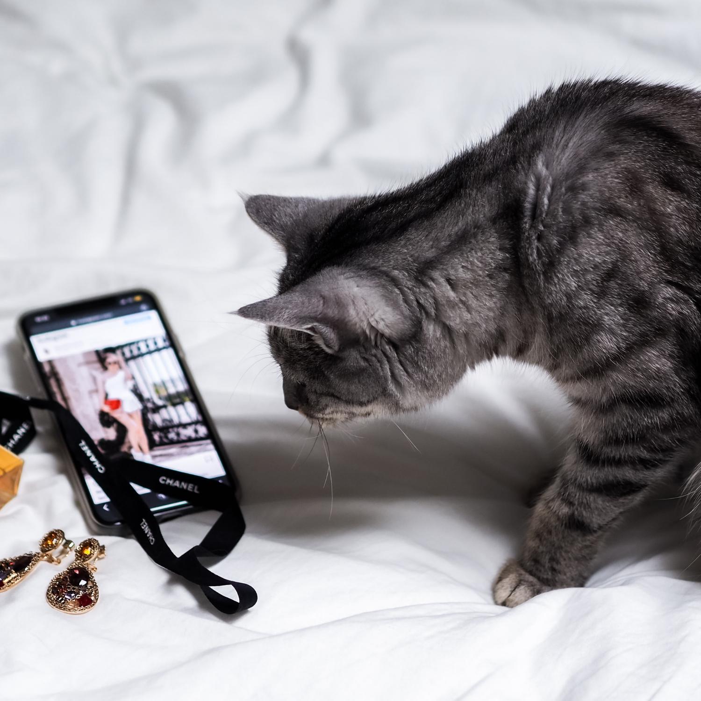 7 tips voor succesvolle advertenties op Pinterest